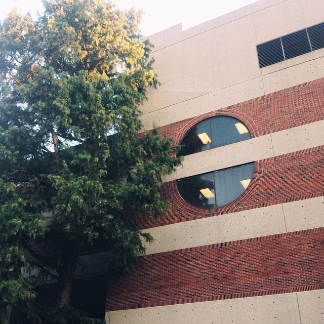 It's a beautiful morning on campus. Part of the south side of Ekstrom Library.